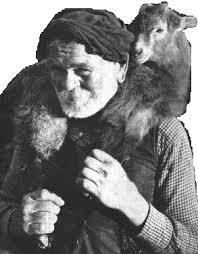 old shepherd 1